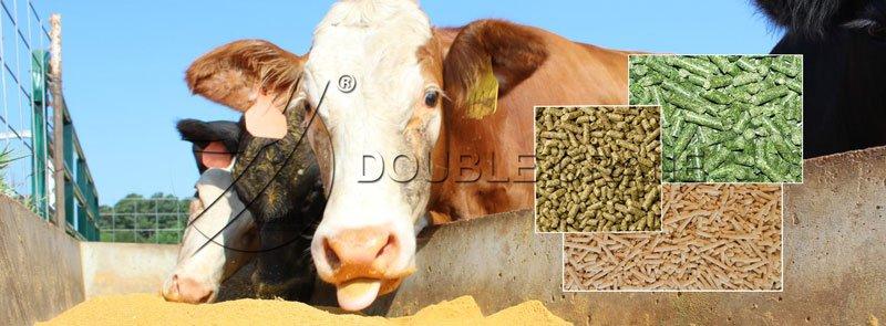 pellets de alimentación para ganado