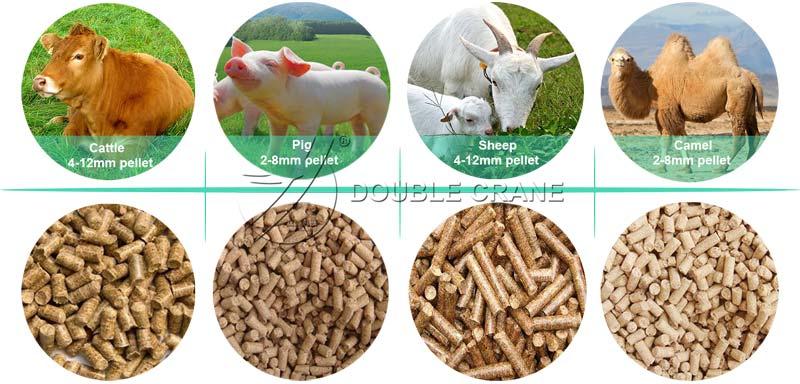 гранулы корма для скота