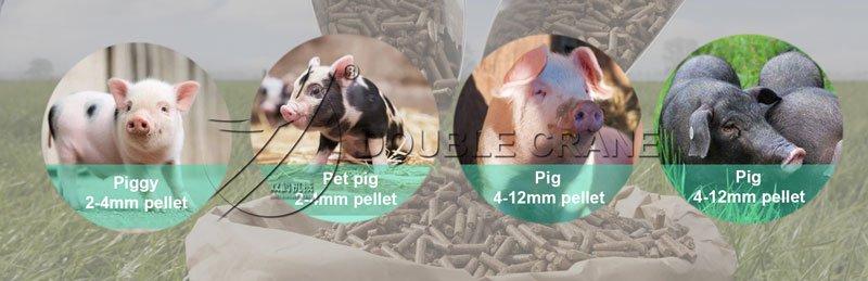granulés d'aliments pour porcs