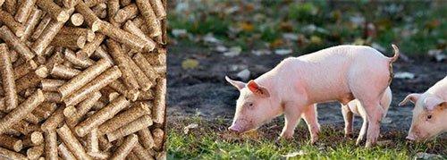 Planta de alimentación porcina