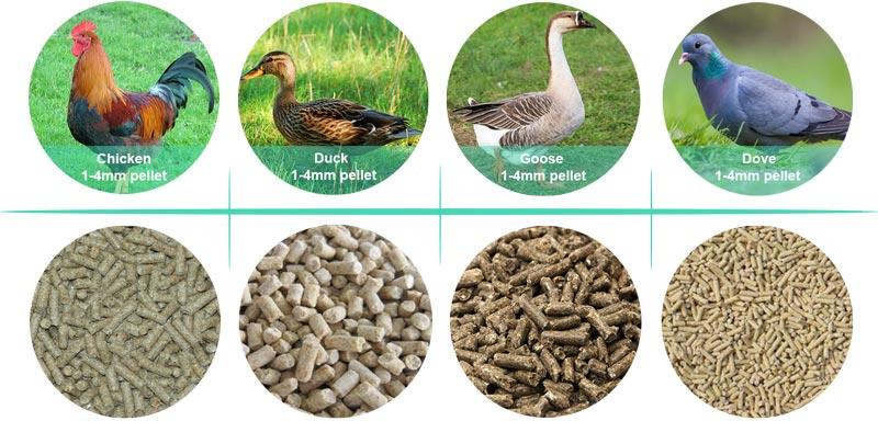 гранулы корма для птицы