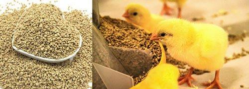 Planta de alimentación avícola