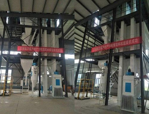 10TPH premix feed plant installed successfully