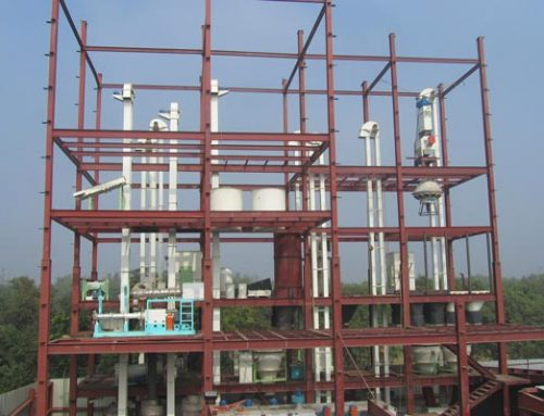 1T/H-3T/H poultry and fish combined feed production line in Bangladesh